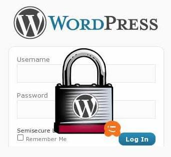 Izdelava spletne strani z Wordpress 7