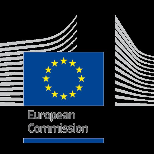 EU VIES VAT check logo